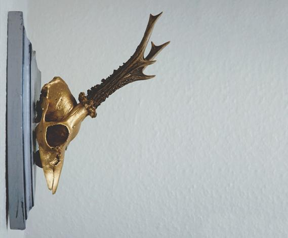 Trophée de chasse doré de profil